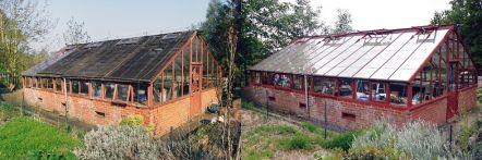 Greenhouse restoration - greenhouse repair - image 26