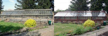 Greenhouse restoration - greenhouse repair - image 36