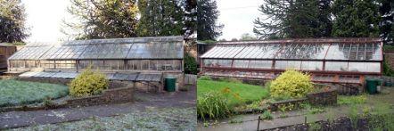 Greenhouse restoration - greenhouse repair - image 37