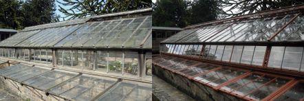 Greenhouse restoration - greenhouse repair - image 38