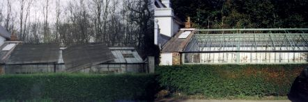 Greenhouse restoration - greenhouse repair - image 4