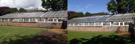 Greenhouse restoration - greenhouse repair - image 41
