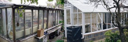 Replacement greenhouse - image 50