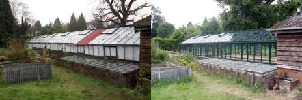 Replacement greenhouse - image 55